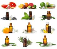 Set with different essential oils. On white background royalty free stock photo