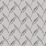 Set of Different Feathers. Isolated on Grey Background. Seamless Feather Pattern Royalty Free Stock Photos