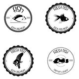 Set Of Different Fish Labels Isolated Royalty Free Stock Photography