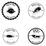 Set Of Different Fish Labels Isolated Royalty Free Stock Photos