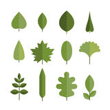 Set of different flat green leaves. Royalty Free Stock Photos