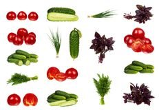 set of different Fresh organic red tomato, onion, dill, basil and cucumber isolated on the white background Royalty Free Stock Photography