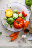 Set of different fresh raw colorful vegetables in ceramic plate. On linen background Royalty Free Stock Photography
