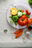 Set of different fresh raw colorful vegetables in ceramic plate. On linen background Royalty Free Stock Images