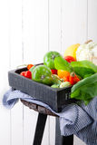 Set of different fresh raw colorful vegetables in wooden tray. Set of different fresh raw colorful vegetables in black wooden tray on white background Stock Photography