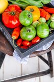 Set of different fresh raw colorful vegetables in wooden tray. Set of different fresh raw colorful vegetables in black wooden tray on white background Stock Photos