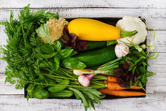 Set of different fresh vegetables. Stock Photo