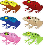 Set of different frogs Stock Photos