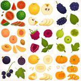 Set of whole and sliced fruit. Vector illustration. A set of different fruits and berries. Vector illustration. Whole, halves and sliced fruit royalty free illustration