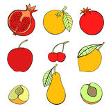 Set of different fruits. Doodle set of different fruits isolated on white background royalty free illustration