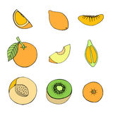 Set of different fruits. Doodle set of different fruits isolated on white background stock illustration