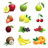 Set of different fruits with leaves and flowers Royalty Free Stock Image