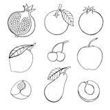 Set of different fruits. Monochrome Doodle set of different fruits isolated on white background Royalty Free Stock Image