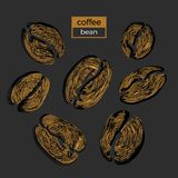Set of different golden coffee beans on black background. Vector collection. Sketch vector illustration
