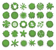 Set of different green trees, shrubs, hedges. Top view for landscape design projects. Vector illustration, isolated on. White background Royalty Free Stock Photography