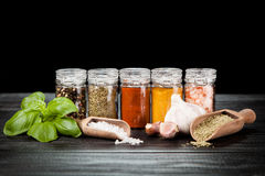 Set of different herbs and spice Royalty Free Stock Photography