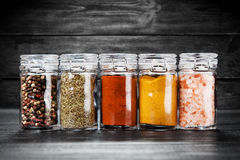 Set of different herbs and spice Stock Images