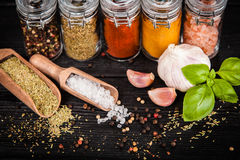 Set of different herbs and spice Stock Image