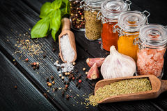 Set of different herbs and spice Royalty Free Stock Photos