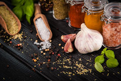 Set of different herbs and spice Royalty Free Stock Images