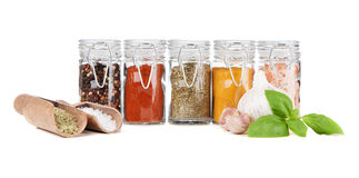 Set of different herbs and spice Stock Photography