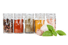 Set of different herbs and spice Royalty Free Stock Photo