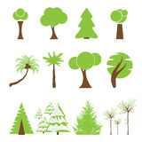 Set of different kind of tree Royalty Free Stock Images