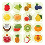 Set of different kinds of fruit icons. Stock Image