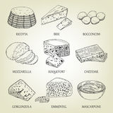 Set of different kinds of graphic cheese. Realistic vector sketch with dairy product. Stock Photo