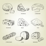 Set of different kinds of graphic cheese. Realistic vector sketch with dairy products. Curds collection used for logo design, recipe book, advertising cheese Stock Photo