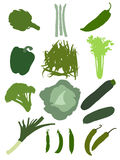 Green vegetables set. Set of 13 different kinds of green vegetables Royalty Free Illustration