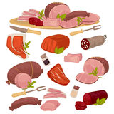 Set of different kinds  meat. Set of different kinds of meat bacon, pork, beef, sausage, steak, salami and wurst. Vector illustration isolated on white Stock Photos
