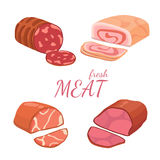 Set different kinds of meat. Vector illustration on white background. Illustration of a set of different kinds of meat. Vector  set Royalty Free Stock Images
