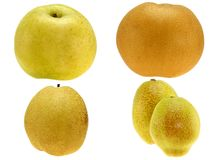 A Set of Different Kinds of Pear Royalty Free Stock Photography