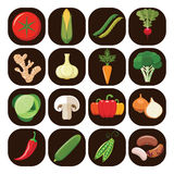 Set of different kinds of vegetables. Stock Photos