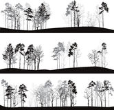Set of different landscapes with pine trees Royalty Free Stock Photos