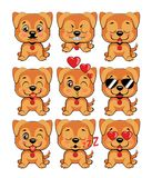 Set of different little dogs. Brown puppies with different emotions Royalty Free Stock Image
