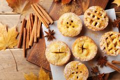 Set of different mini apple pies decorated sugar powder and cinnamon on wooden board top view. Autumn pastry dessert. Royalty Free Stock Photo