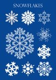 Set of different models of snowflakes on blue background. Vector image Stock Image