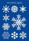 Set of different models of snowflakes on blue background. Vector image Stock Photo
