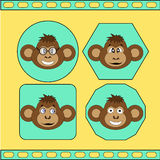 The set of different monkeys EPS 10. The set of different monkeys EPS 10 Royalty Free Stock Photos