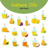 Set of different natural oils bottles color flat icons. Set of different natural oils bottles color icons Royalty Free Stock Photos