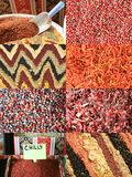 Set of different  oriental spices Royalty Free Stock Images