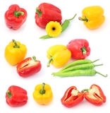 Set of different peppers Royalty Free Stock Photography