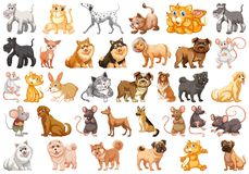 Set of different pets. Illustration vector illustration
