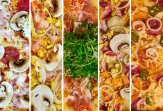 A set of different pizza for the menu, with cheese, with ham, with salami, with mushrooms, with holopina with tomatoes on stock photos