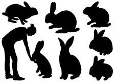Set of different rabbits. Isolated on white Stock Photo