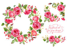 Set of different red, pink flowers, frame, decorative corners fo Stock Photo
