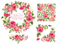 Set of different red, pink flowers, frame, decorative element Royalty Free Stock Photos