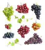 Set with different ripe grapes. On white background royalty free stock photography